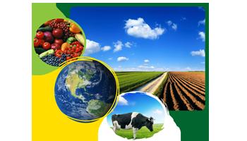 Industrias agroalimentarias
